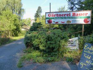 Gartenbau Bauer